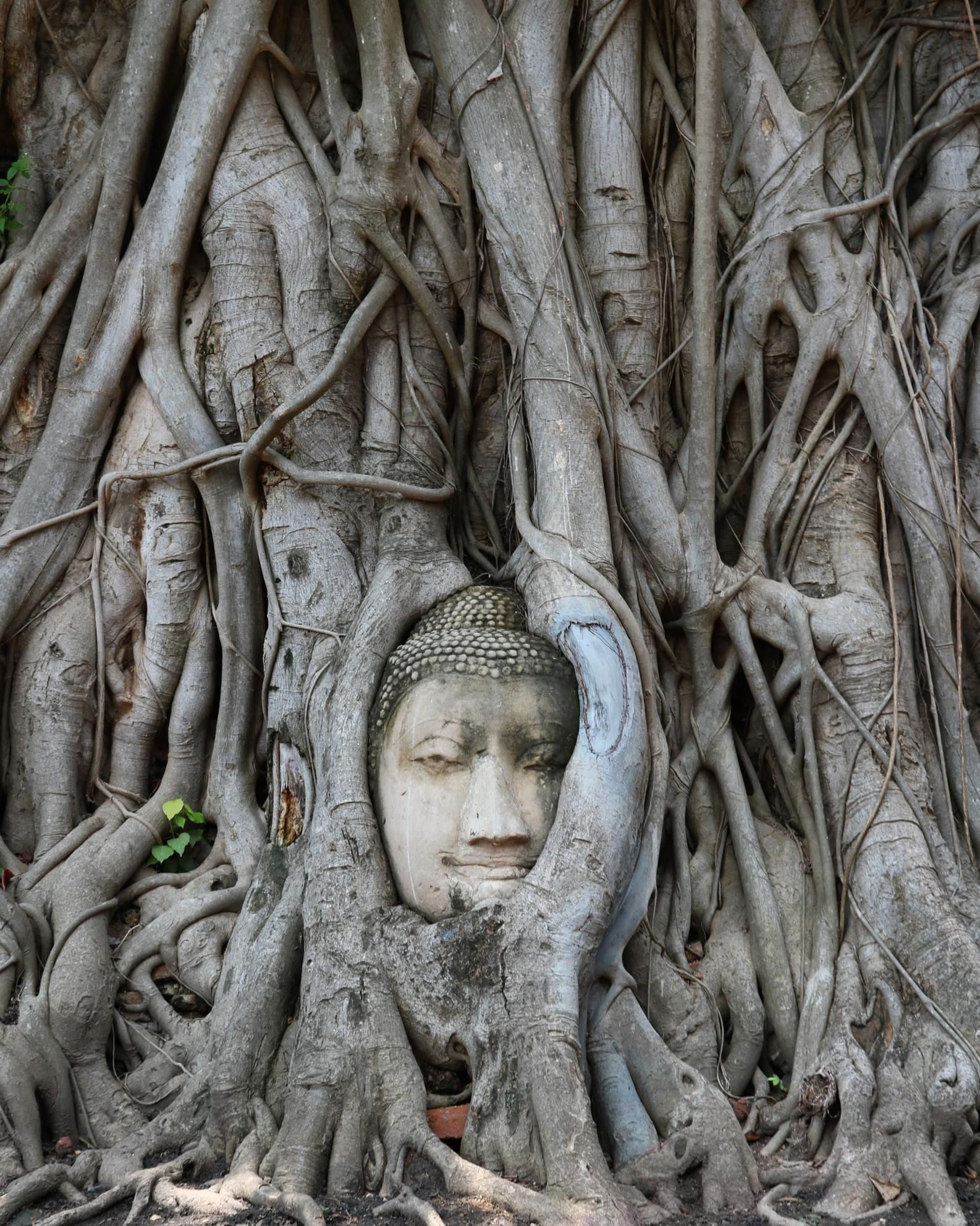 Ayutthaya, Thailand - travel destinations