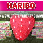 Haribo Summer Strawberries